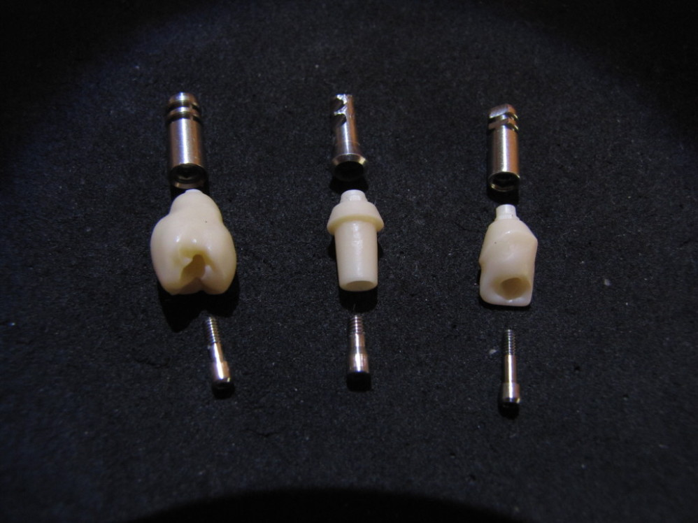 Digident abutments
